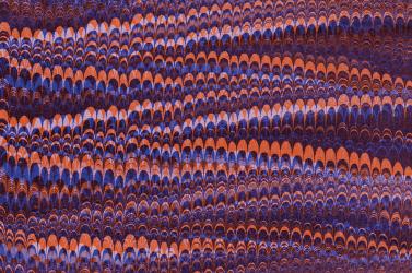Imagem / Técnica — Os inventários de Emílio Biel