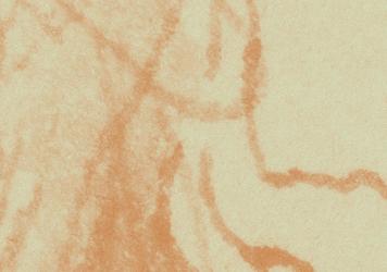 Sonhos e Raciocínios — 500 anos depois de Leonardo da Vinci